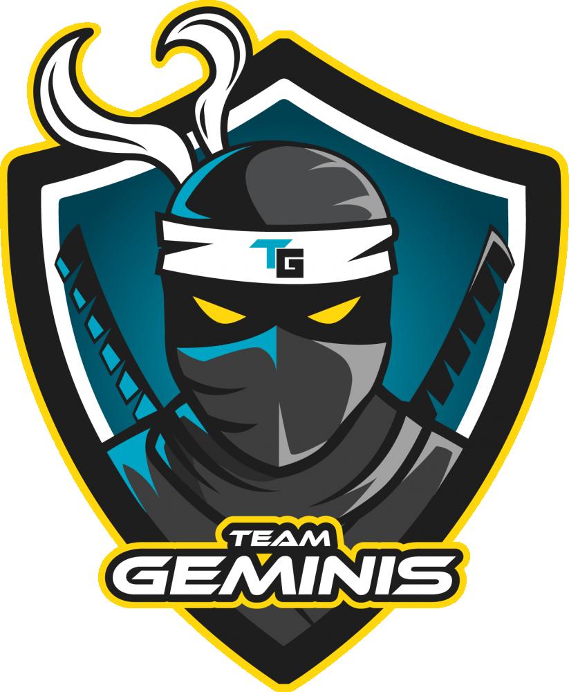 Team Geminis