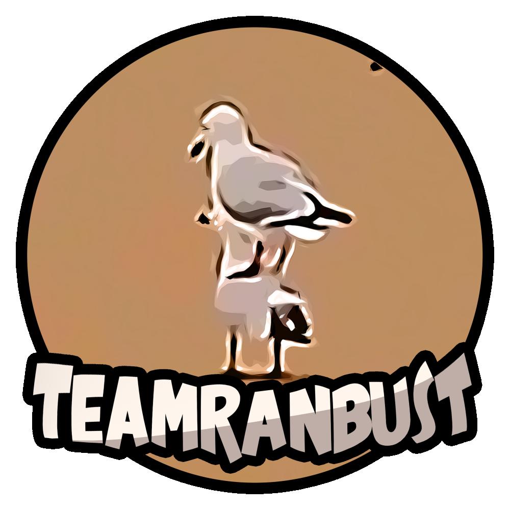 TeamRanBust
